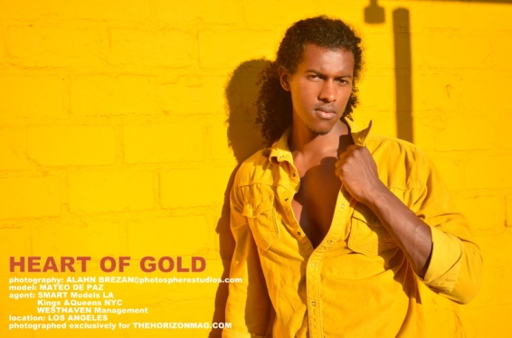 Heart of Gold-001