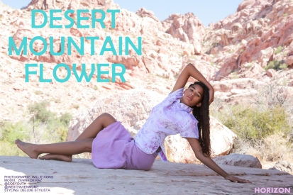 DESERT MOUNTAIN FLOWER- ZENNA DEPAZ-001