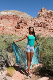 DESERT MOUNTAIN FLOWER- ZENNA DEPAZ-009